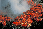 Traditional Lobster Bake - Photo Courtesy of the Convention & Visitors Bureau of Greater Portland